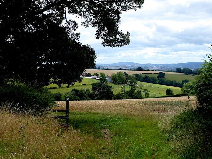 Herefordshire's Iron-age Hill Forts: Aconbury image