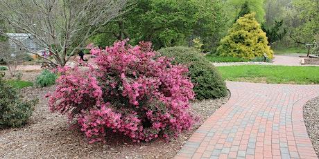 Woody Ornamentals - Piedmont Spring Gardening Series tickets