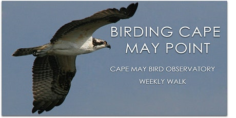 Birding Cape May Point tickets
