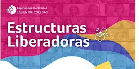 WEBINAR informativa Lab Entre Colegas de Estructuras Liberadoras. 8va ed. entradas