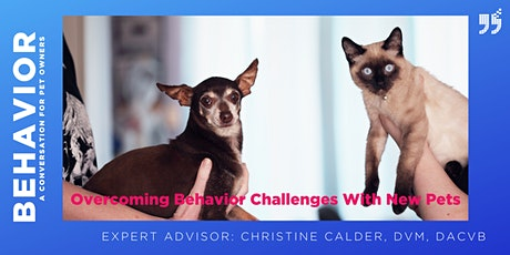 Overcoming Behavior Challenges with New Pets tickets