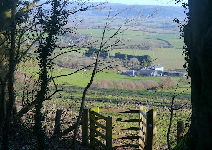 Herefordshire's Iron-age Hill Forts:  Dinedor Hill image
