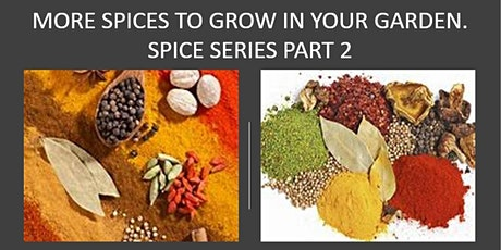 MORE SPICE TO GROW IN YOUR GARDEN - Growing Spice Series Part2 tickets