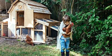 Garder des poules, tout naturellement (formation exhaustive) billets