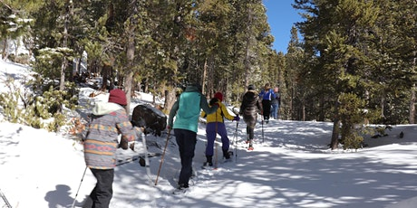 Super Snowshoe Hike and Meditation tickets