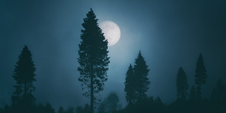 ONLINE: MORNING Full Moon Healing Circle tickets