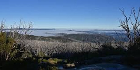 Lake Mountain Woolybutt Loop - 16km hike on the 5th of June , 2021 tickets