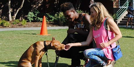 Megan Blake's Group Dog Training tickets