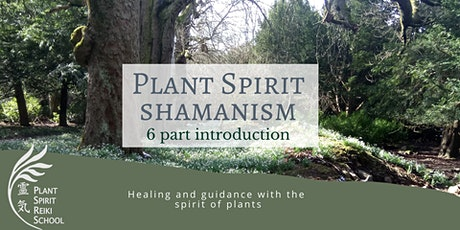 Plant Spirit Shamanism 6 part introduction tickets