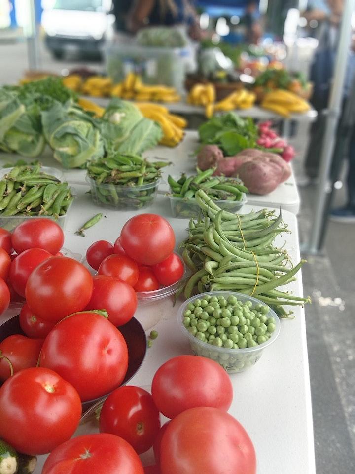 Te Puna Market Summer 2021 image