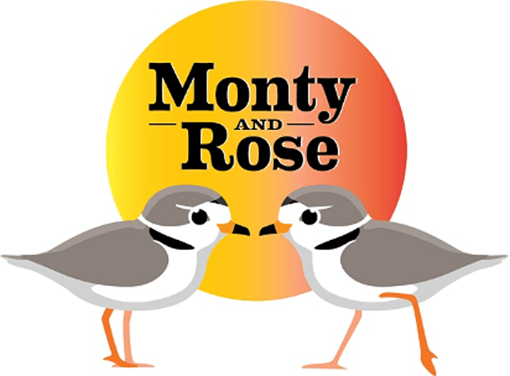 Film Documentary: Monty and Rose: The Story of Chicago's Piping Plovers. image