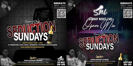 Seduction Sundays - Models & Bottles Casting After-Party! tickets