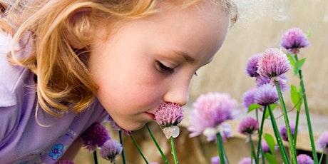 Children's Herbal Workshop tickets