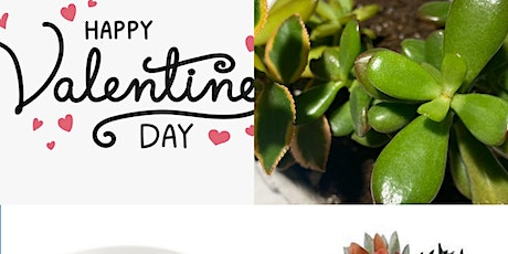 Valentines Succulents tickets
