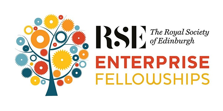 Introduction to RSE Enterprise Fellowships image