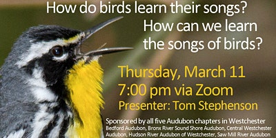 Learning Bird Song with Tom Stephenson, Thursday, 3/11/21, 7:00 pm