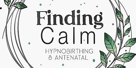 Free Online Hypnobirthing Taster tickets