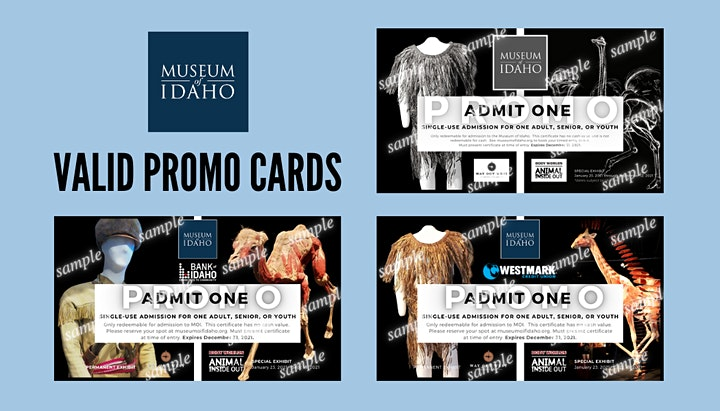 Museum Opening: Timed Entry Tickets image