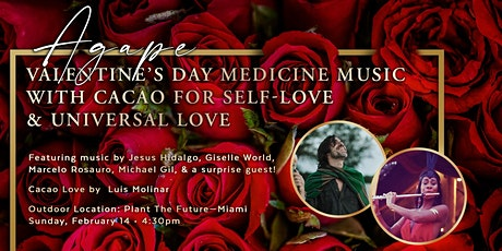 Agape: Valentines Day Medicine Music & Cacao for Self-Love & Universal Love tickets