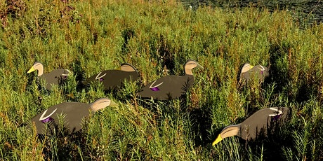 The Art of Deception, Duck Decoy Workshop with Master Carver Jode Hillman tickets