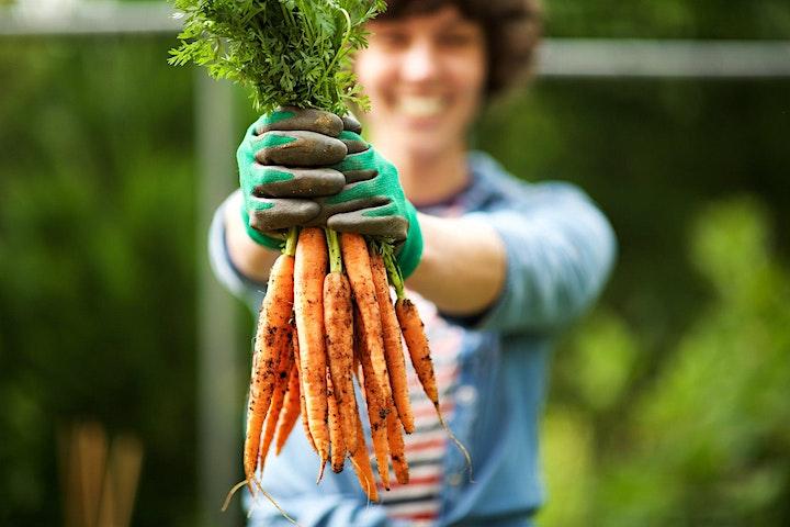 Preparing for a winter harvest image