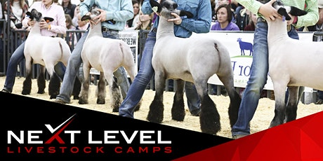 NEXT LEVEL SHOW SHEEP CAMP | June 5th & 6th | Brighton, Colorado tickets