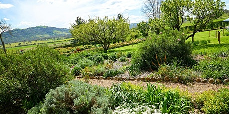 HARVEST DAY OUT: TOUR: Lanyon Garden History Walk tickets