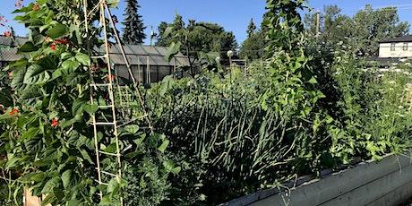 f Beyond Kale-Webinar -  Plan Your Edible Garden Now for Success in 2021! tickets