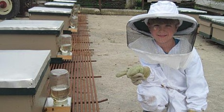 Beekeeping 101: Two Part Course  February 20th & 27th tickets