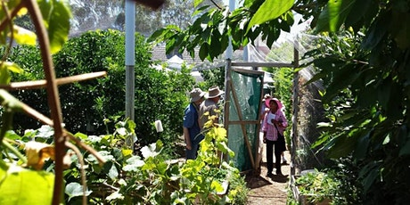 Open Garden 2021 for OGSA by Joe's Connected Garden tickets