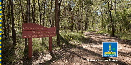Bush Kindy: Scavenger Hunt in Karawatha Forest tickets
