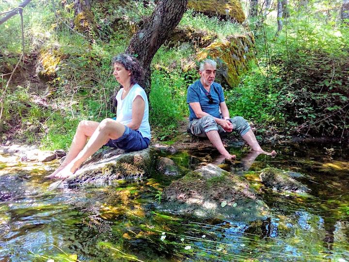 Baño de Bosque sáb  8 Mayo Primavera Bosque La Herrería El Escorial image