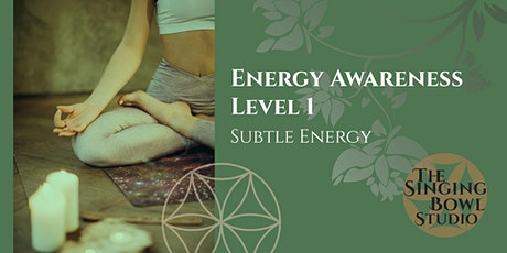 Energy Awareness Workshop Level 1 tickets