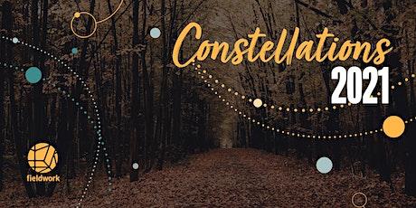 Fieldwork Systemic Constellations - Online  Workshop - Saturday 10th April tickets