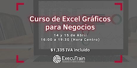 Curso Online Excel Gráficos para Negocios entradas