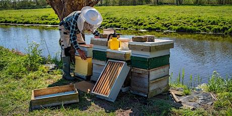 Beginner Beekeeping Class tickets