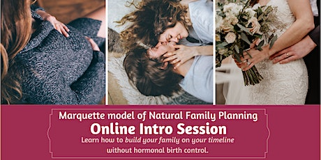 ONLINE Introduction to the Marquette Model of Natural Family Planning tickets