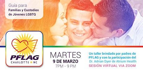 Guía para Familias y Custodios de Jóvenes LGBTQ: Juntos Cruzando el Camino entradas