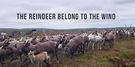 Sámi National Day — The Reindeer Belong To The Wind (Online screening) tickets