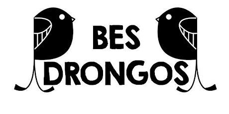 3 Apr BES Drongos Pasir Ris Mangroves Boardwalk tickets