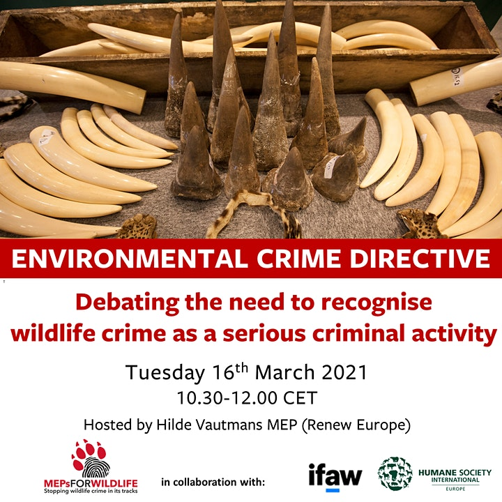 Acknowledging wildlife crime as a serious criminal activity image