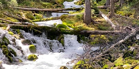 Photography class and   Guided hike-Watridge lake and Karst Springs tickets