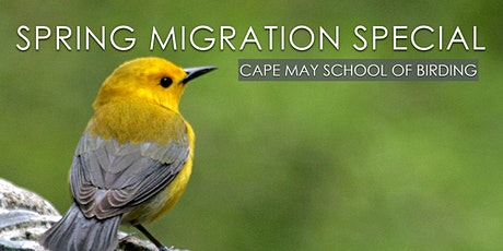 Spring Migration Special tickets