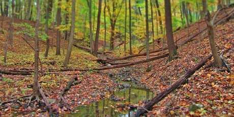 Hike the Preserves: Paw Paw Nature Preserve tickets