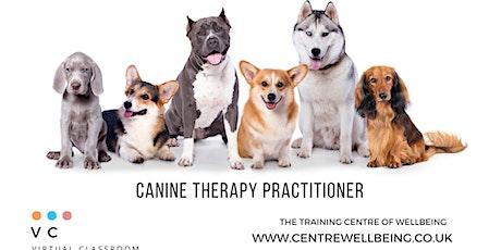Canine Complementary Therapist biglietti