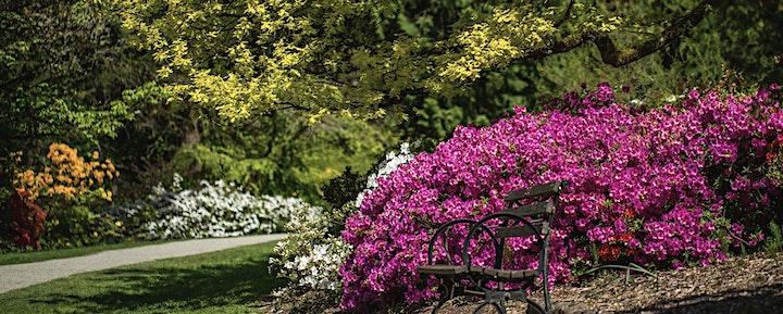 PAWA Paints Washington Park Arboretum 2021 image