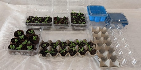 Virtual Urban Horticulture Demo: Upcycled Micro Greenhouses Tickets