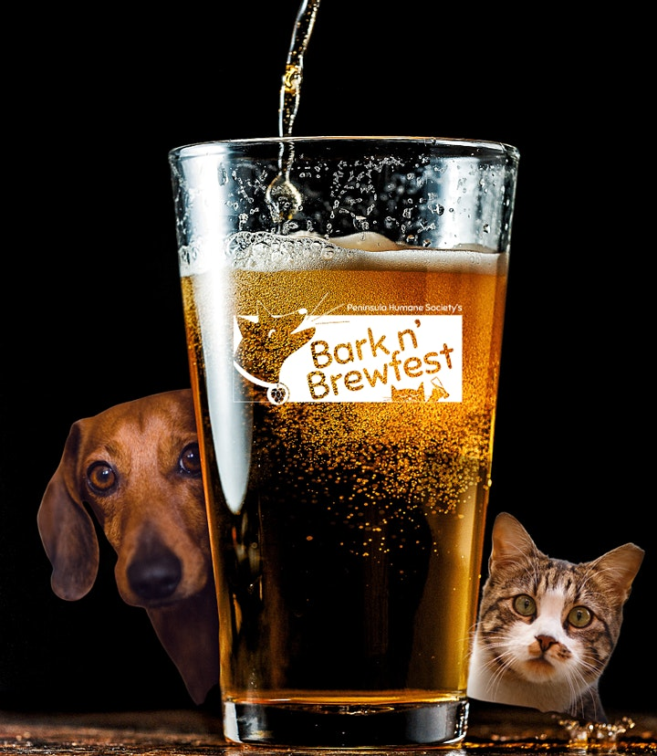 Bark n' Brew comes to YOU: a virtual craft beer experience! image
