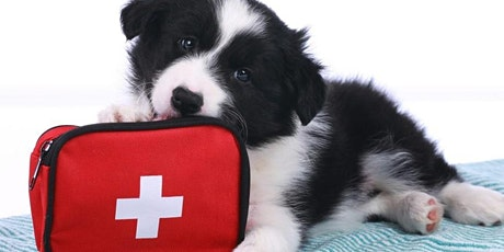 PET Disaster and First Aid tickets