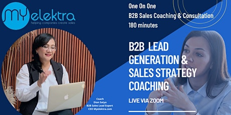 One on One B2B  Sales Coaching and Consultation ( 3 hours) tickets